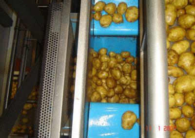 legume_fructe_35